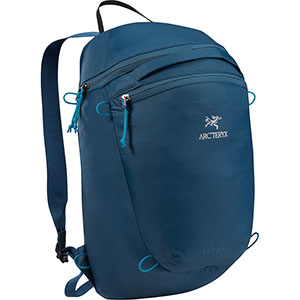 Index 15 Backpack, discontinued colors