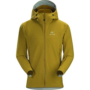 Gamma LT Hoody, men's, discontinued Fall 2019 colors